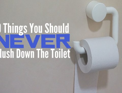 9 Things You Should Never Flush Down The Toilet