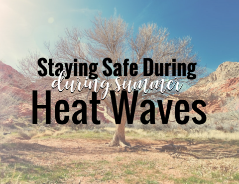 Staying Safe During Summer Heat Waves